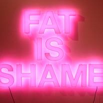 Fat is Shame