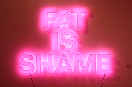 "Fat is Shame, Neon sign installation, 60"" x 42"", 2010"