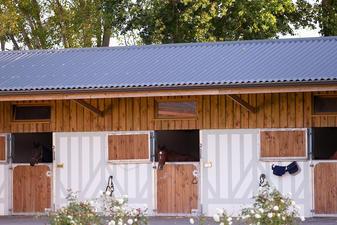 Haras de Saint Julien -200918-22.jpg