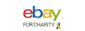 eBay%252520for%252520Charity%2525205_edi