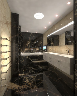 Gib 2- Master Bath1