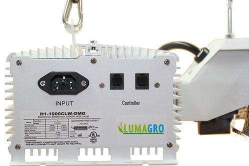 Pro Remote 600W DE System
