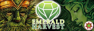 emerald-2-870x290.jpg