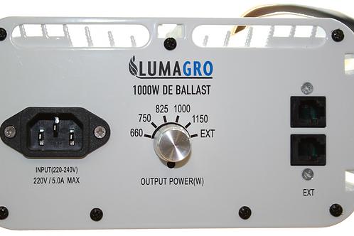 Pro Remote 1000W DE System