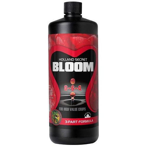 Future Harvest Holland Secret - Bloom