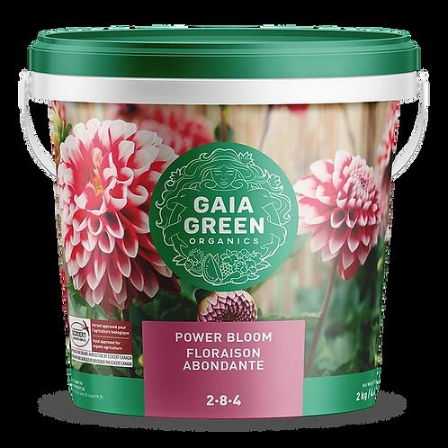Gaia green power bloom 2-4-8