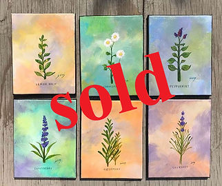 Herb Paintings #101 - Anita Shikles copy
