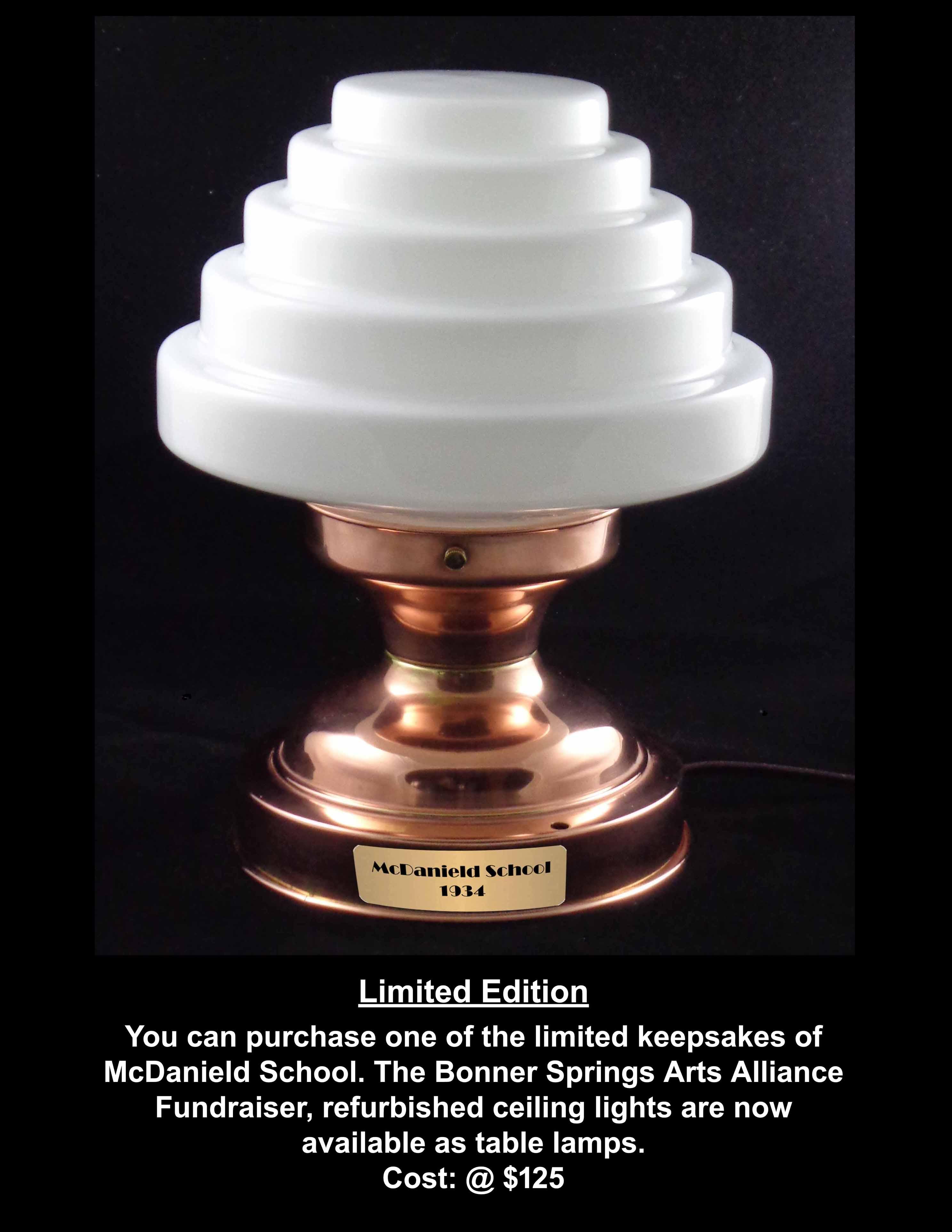 Lamp Fundraiser Poster.jpg