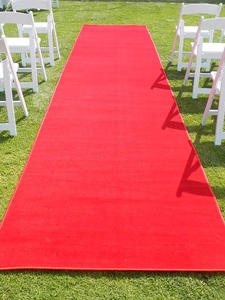 Red Carpet Runner $100