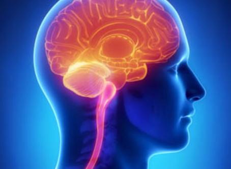 Acupuncture Geelong | Acupuncture Blocks Stress Hormones