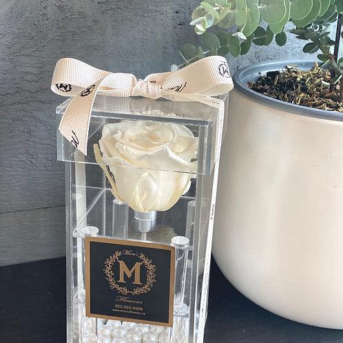Preserved rose in a box-(White)