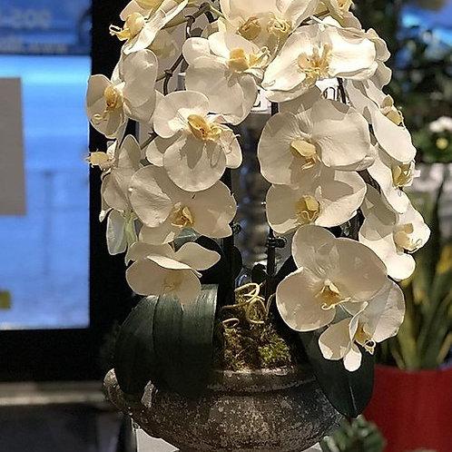 Orchids pot-Artificial Flowers