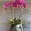 Thumbnail: Purple orchids in a pot
