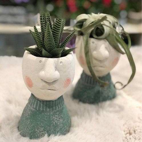 Boy with succulent -each