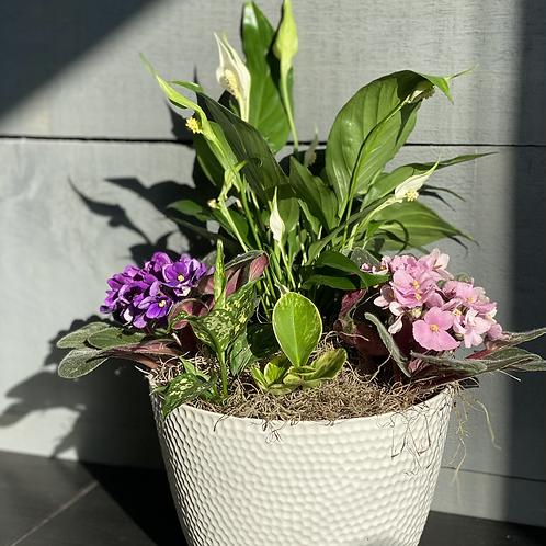 Planters Arrangement #1