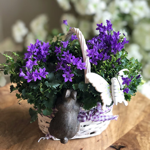 Campanula with Rabbit