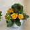 Thumbnail: Fall trio arrangement