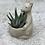 Thumbnail: Animal pot