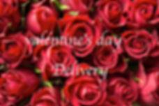 anniversary-bloom-blooming-196664.jpg