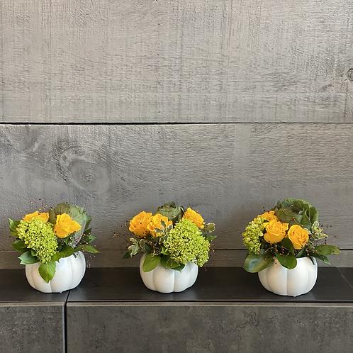 Fall trio arrangement