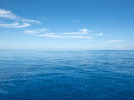 Article du magazine Forbes: There Will Be Blue Ocean's Everywhere Post Pandemic