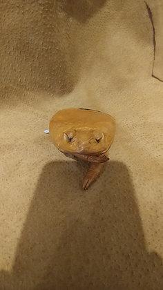 Bull-Frog Coin Purse