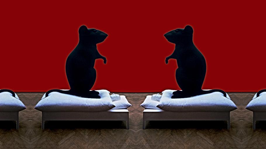 Une souris grise / Tu devras bien un jour raconter la vérité à quelqu'un I Eclats Rémanence
