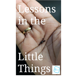 Lessons in the Little Things.png