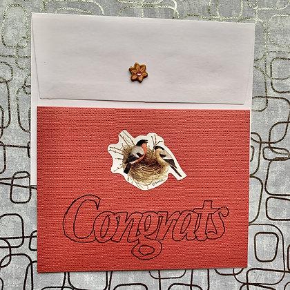 Blank Congratulations Blank Greeting Card