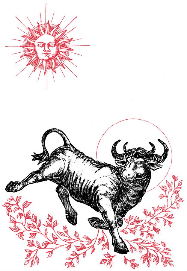 taurus_zodiac_WallArt_Micah_Ulrich_Poste