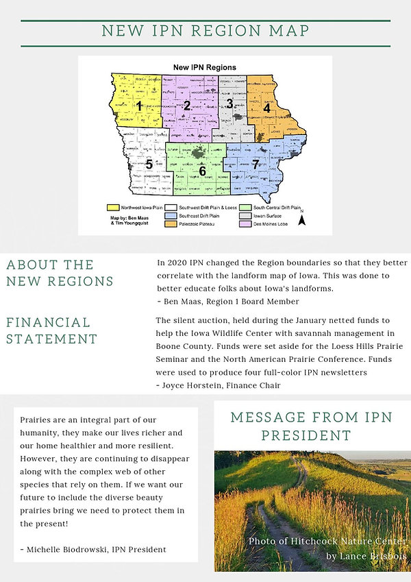 IPN 2020 Annual Report (4)-page-003.jpg