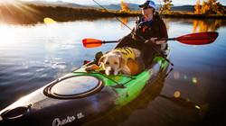 pooch kayaking.jpg