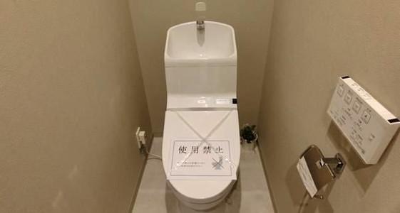 蓮根ファミールハイツ2号棟トイレ.jpeg