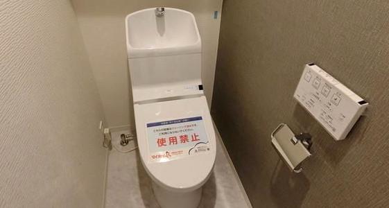 グリーンハイツはすね トイレ.jpeg