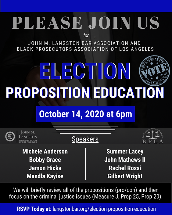 Election Proposition Education Flyer(10-
