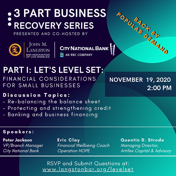 3 PART BUSINESS RECOVERY SERIES-Level Se