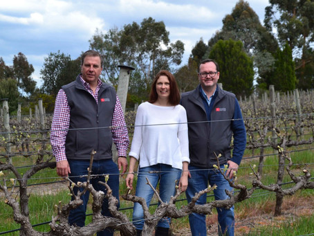 Meet the winemaker: Brad Rey, Zonte's Footstep