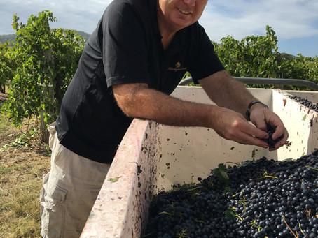 Meet the winemaker: Tim Stevens, Huntington Estate