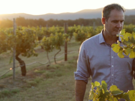 Meet the winemaker: Jim Chatto, Mount Pleasant Wines