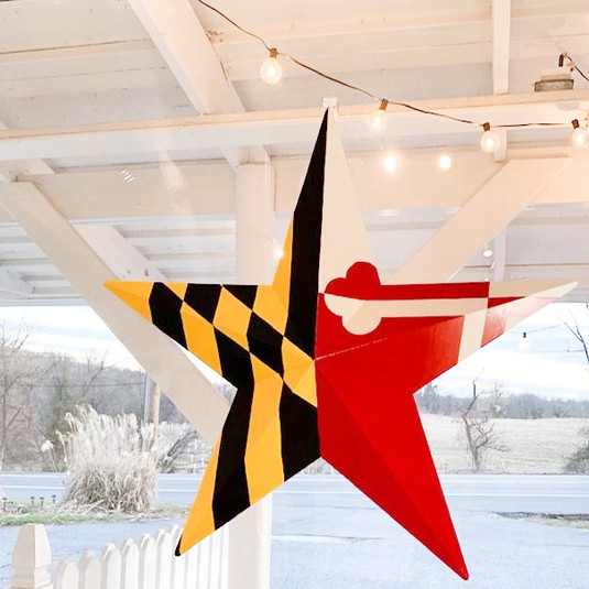 Catonsville Mercantile Maryland 7th State Star