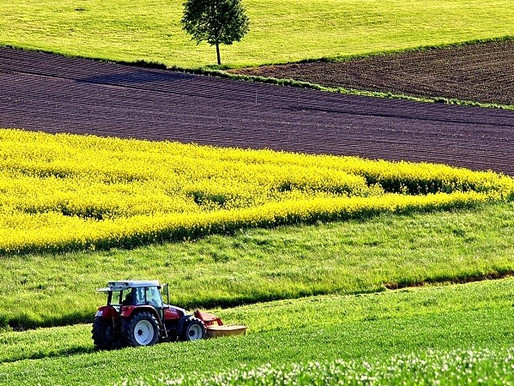 Деякі питання щодо відкриття ринку землі