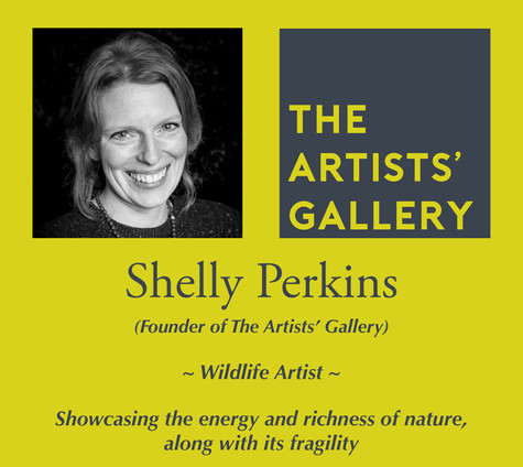 Shelly Perkins