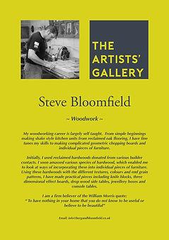 SteveBloomfieldBio.jpg