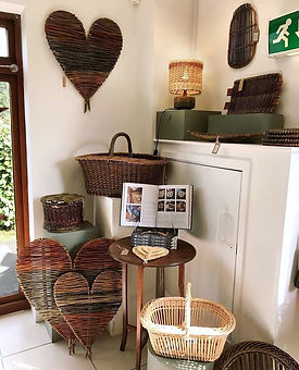 Willow with roots gallery display.jpg