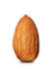 kisspng-almond-clip-art-almond-png-photo