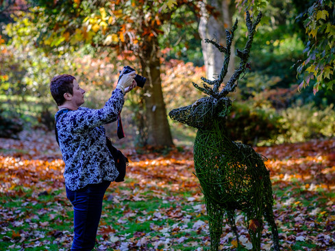 21/10/18 Autumnal Colours at Ramster Gardens