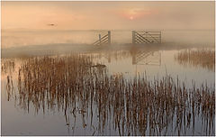 DEPARTURE AT DAWN by Ron Edwards.jpeg