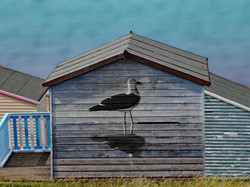 THE SEAGULL HUT by Richard Peters