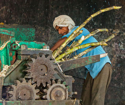 SUGAR CANE CRUSHER by Richard Peters