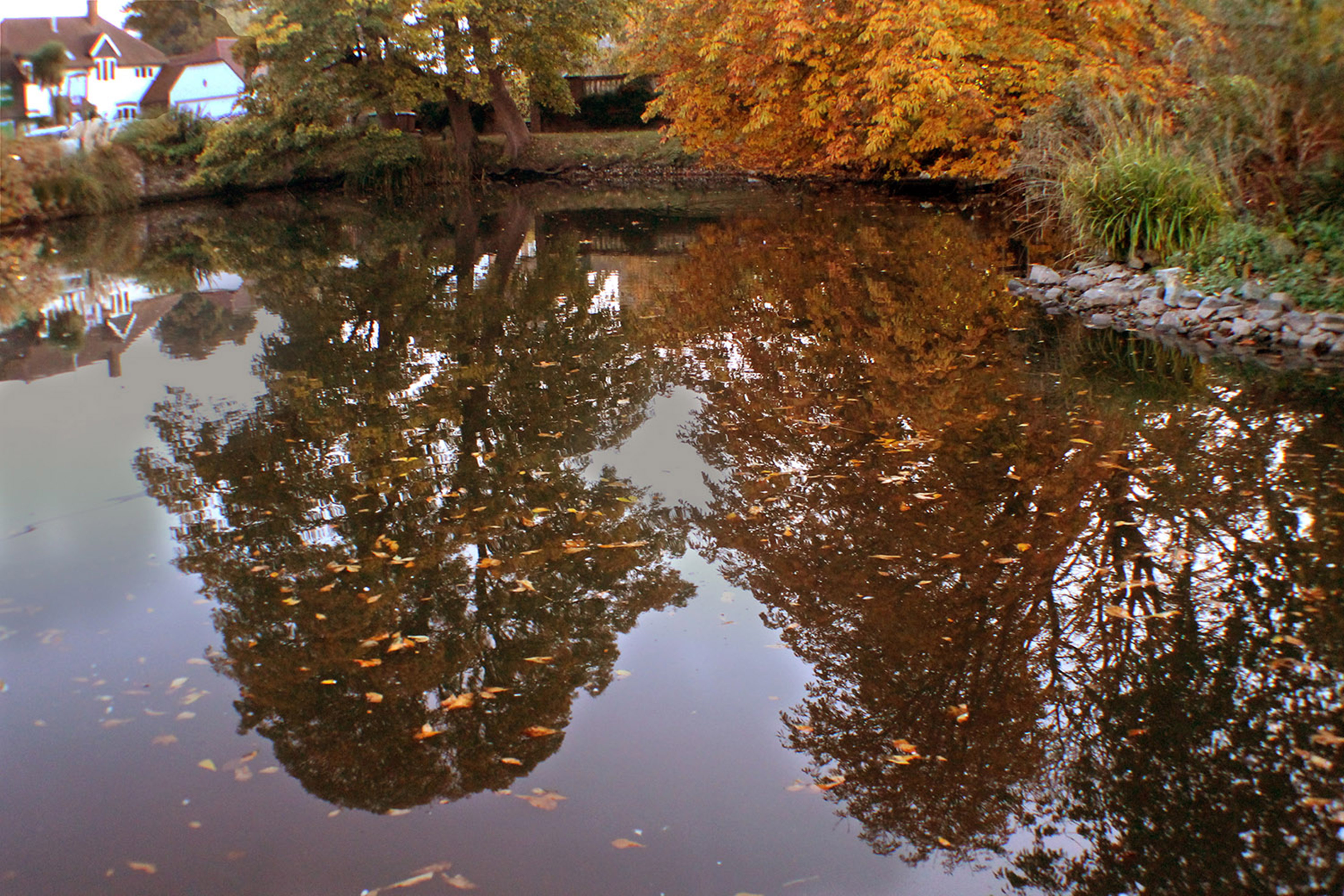 Autumn Reflections by Kim Read
